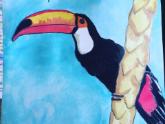 Toucan, encres de couleus - MA GAro 2019 -  exposition avril 2019