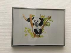 Panda - encres de couleurs aquarellées. DR M-GAro